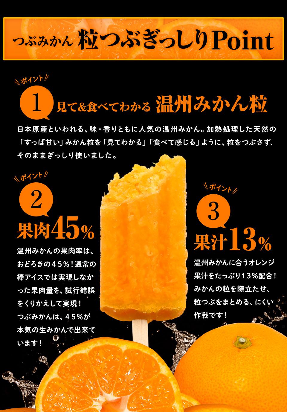 つぶみかん粒つぶぎっしりPoint 見て&食べてわかる温州みかん粒 果肉45% 果汁13%